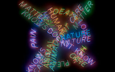 Bruce Nauman Retrospective at MoMA & PS1