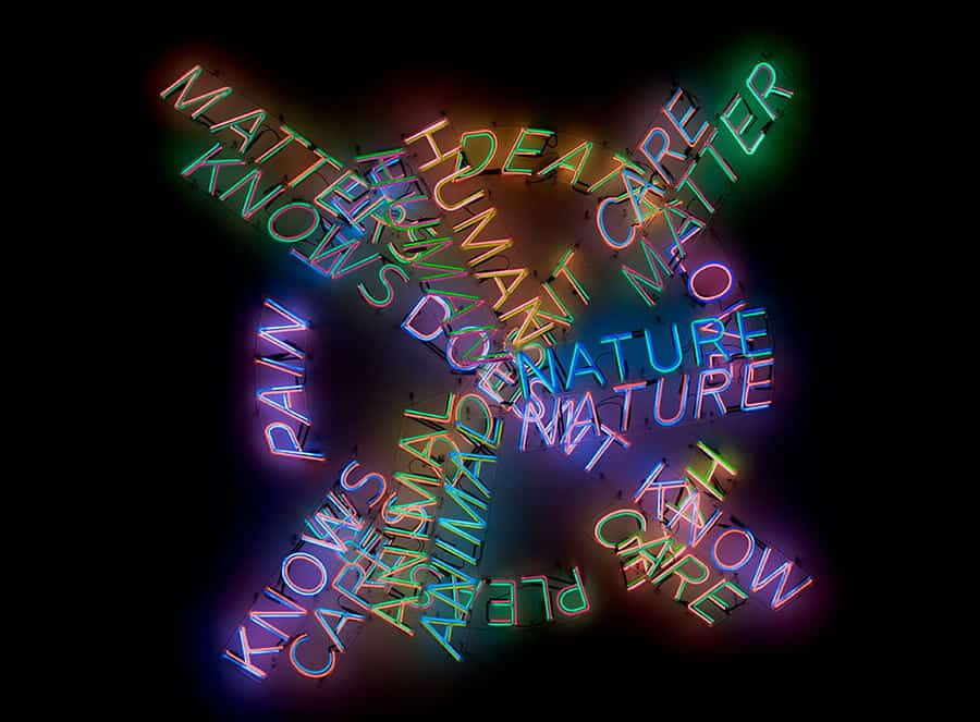Bruce Nauman retrospective MoMA and PS1